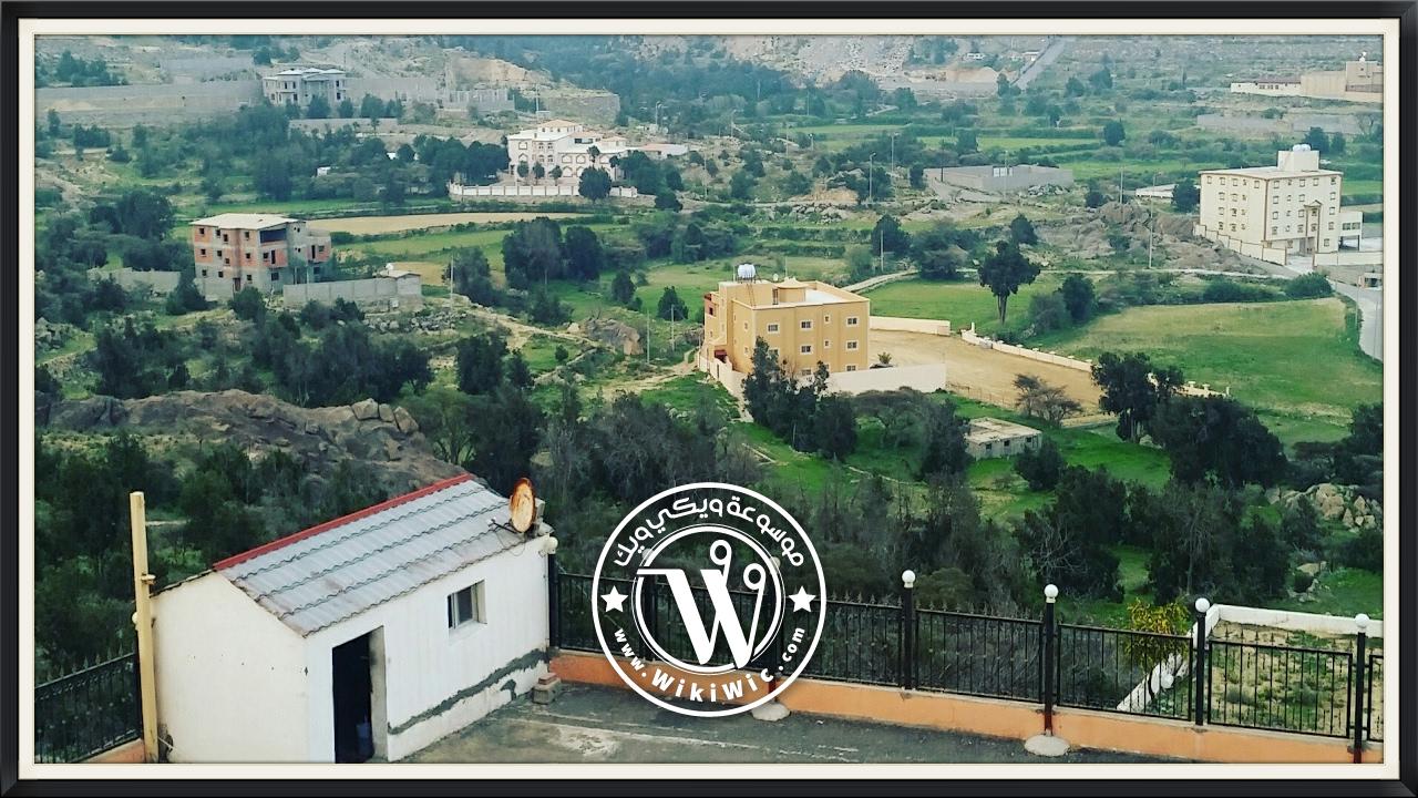 مدينة النماص أين تقع النماص وأبرز معالمها Wiki Wic ويكي ويك